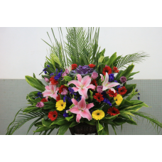 Flowers for Congratulations with Red Lily and Mixed Colors of Gerberas