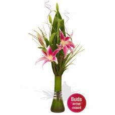 Simple Lily Bouquet