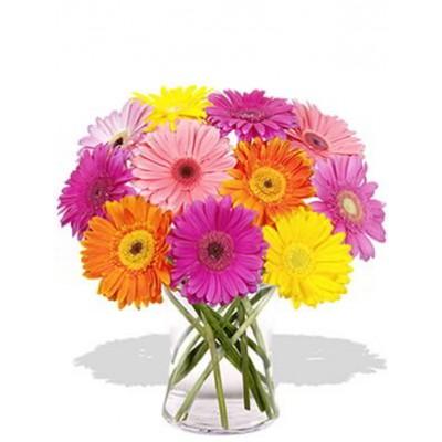 12 Mixed Color Gerberas Vase Bouquet